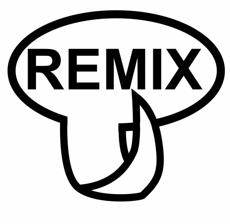 Remix – Artificial Consciousness in a Mixture of Human Messages